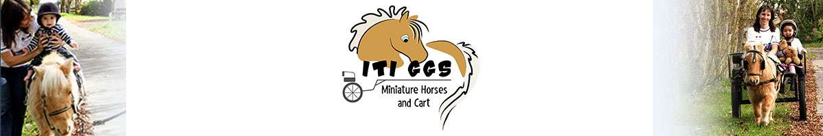 Miniature Horse & Cart